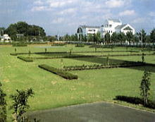 浦和市大崎公園駐車場(埼玉県)